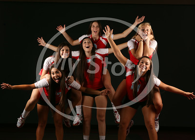 Antonian Senior Volleyball Girls (Class of 2015)